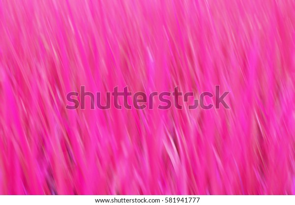 Abstract blur background in pink tone