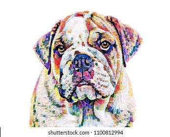 abstract bulldog art