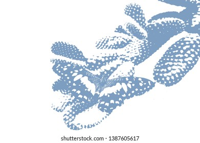 Abstract cactus and butterfly with copy space for text