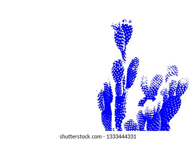 Abstract cactus with copy space