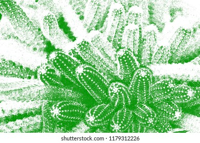 Abstract cactus in painting design