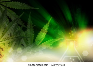 abstract cannabis background.cannabis concept.