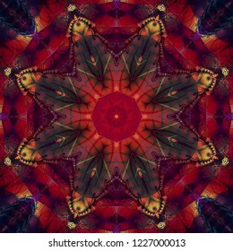 Abstract colored fractal with kaleidoscopical pattern. Illustration for design. Bright flower.