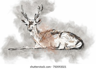 f60da7cc5 Nature Deer Oil Painting Stock Illustrations, Images & Vectors ...