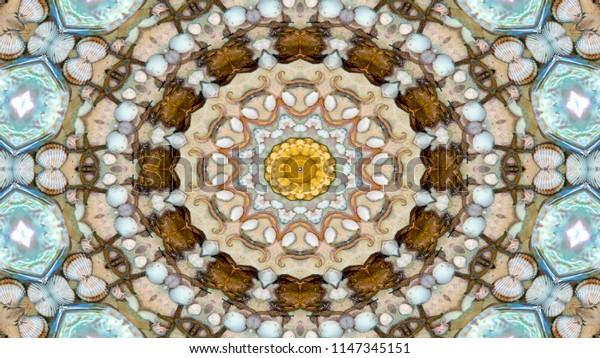Abstract Dry Seashells and Stars  Concept Symmetric Pattern Ornamental Decorative Kaleidoscope Movement Geometric Circle and Star Shapes