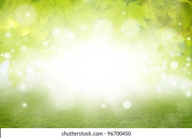 Abstract eco background - green leaves, grass, bright sun