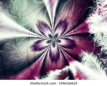 Abstract flower feathers