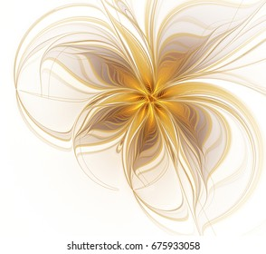 Abstract fractal golden flower on a white background