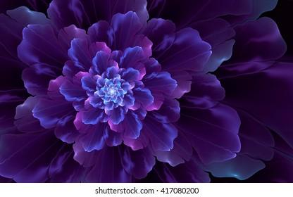 Abstract fractal, wavy violet-blue decorative flower, dark background