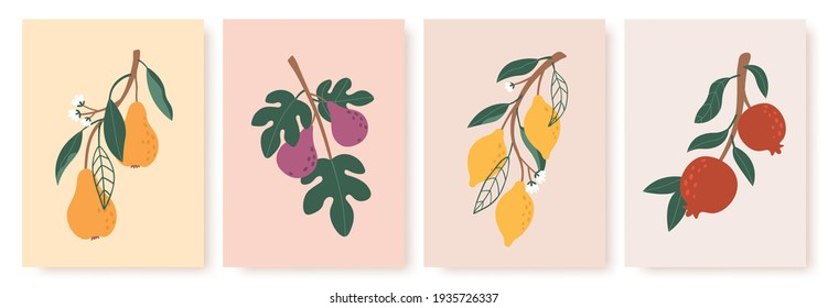 Abstract fruit poster. Modern prints with summer fruits, leaves and flowers. Lemon, pear and fig branches in minimalist art style  set
