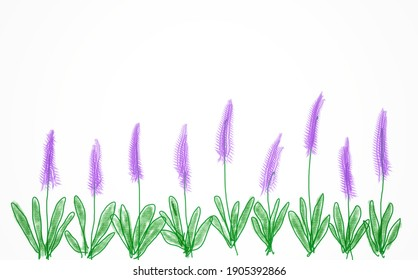 Abstract hand drawing of purple flowers on white background