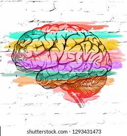 Abstract human brain colored striped  against a white brick wall as an expression of a variety of emotions and thoughts.