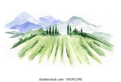 Abstract landscape with vineyard / Watercolor illustration, mountain landscape with fields
