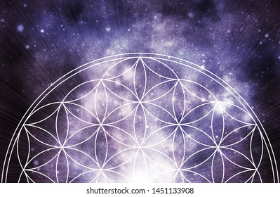 abstract life flower zen background
