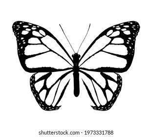 Abstract monarch butterfly , isolated on the white background
