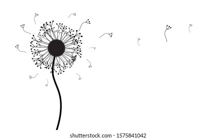 Abstract monochrome background of a blooming dandelion with eminated flying seeds in the air with space for text.
