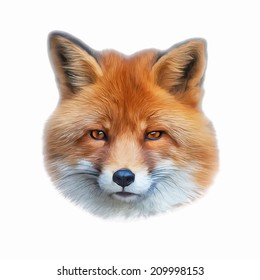 Abstract oil painting portrait of a cute red fox, isolated on white background. The mask of a wild beauty of the nature. Square illustration