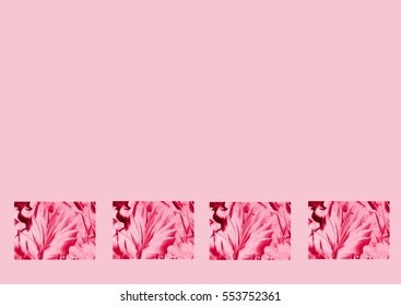 Abstract rose flowers with rose background