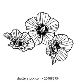 Abstract rose of sharon flower with black artsy lines in the petals in a doodle clipart drawing that is hand drawn and isolated on a white background.