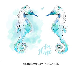 Abstract seahorse isolated on white and on blue sea background. Hand drawn watercolor underwater illustration.