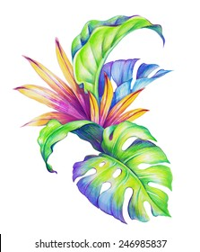 abstract tropical leaves and flowers, jungle plants, watercolor illustration isolated on white background