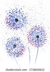 Abstract watercolor dandelion.Watercolor colorful flowers