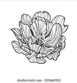 Abstract rose sharon flower black artsy stock illustration 204892954 abstract wild rose clip art with artsy lines in a pretty flower design of hand drawn mightylinksfo