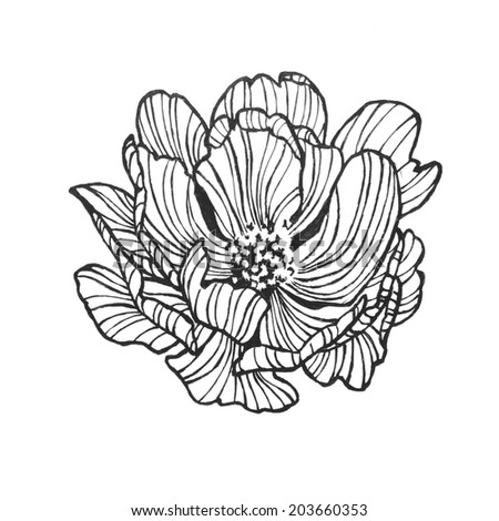Abstract wild rose clip art artsy stock illustration 203660353 abstract wild rose clip art with artsy lines in a pretty flower design of hand drawn mightylinksfo