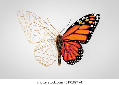 Abstract Wired Low Poly Butterfly on a grey background. 3d Rendering