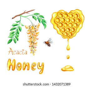 """Acacia honey in honeycombs in the form of a heart, the inscription """"Acacia honey"""", a branch of yellow acacia and a bee, watercolor painting on a white background. isolated."""
