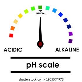 Acidic and alkaline measurement gauge