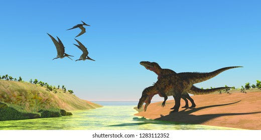 Acrocanthosaurus Dinosaurs 3D illustration - Pteranodon reptiles fly over two Acrocanthosaurus dinosaurs as they drink from a stream in the Cretaceous Period.