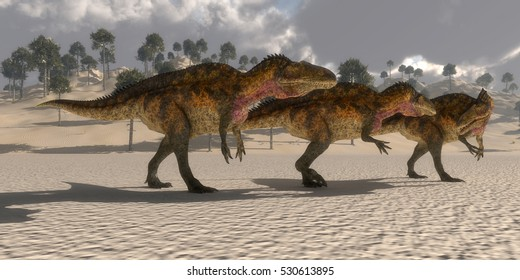 Acrocanthosaurus Dinosaurs 3D Illustration - Acrocanthosaurus theropod dinosaurs band together to search for prey in the Cretaceous period.
