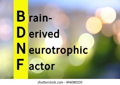 Acronym BDNF as Brain-derived neurotrophic factor