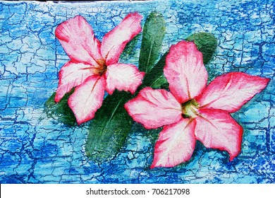 Acrylic hand painting on the white and blue wooden background of Azalea flowers or Chuan Chom flower