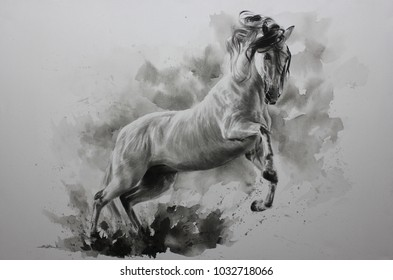 Drawing Realistic Horse Images, Stock Photos & Vectors | Shutterstock