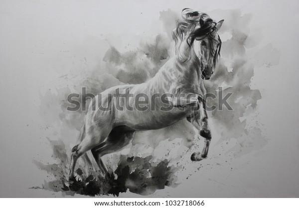 Acrylic Painting Horse On Canvas Draw Stock Illustration