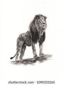Pencil Sketch Lion Images Stock Photos Vectors Shutterstock