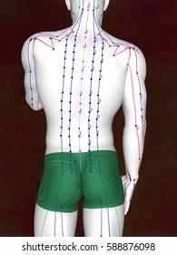 Acupuncture model, 3D illustration