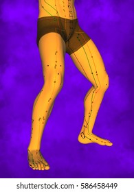 Acupuncture model, Purple Background, 3D illustration