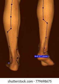 Acupuncture Point BL63 Jinmen, 3D Illustration, Brown Background