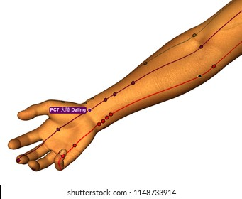 Acupuncture Point PC7 Daling, 3D Illustration, White Background