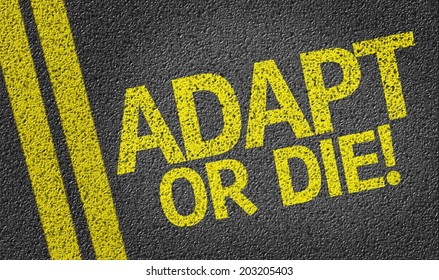 Adapt or Die written on the road