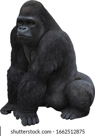 adult gorilla close-up on a white background 3d images