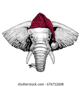 African or indian Elephant Christmas illustration Wild animal wearing christmas santa claus hat Red winter hat Holiday picture Happy new year