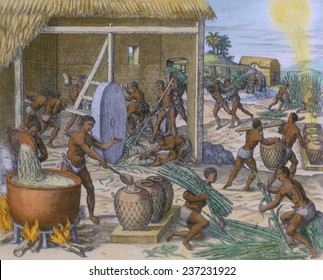 African slaves processing sugar cane on the Caribbean island of Hispaniola, 1595 engraving by Theodor de Bry with modern watercolor.