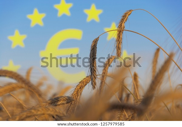agriculture subsidies in Europe illustration