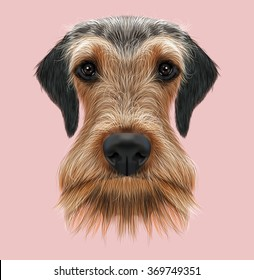 Airedale Terrier Dog Portrait. Illustrated Portrait of Airedale Terrier on pink background