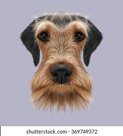Airedale Terrier Dog Portrait. Illustrated Portrait of Airedale Terrier on blue background