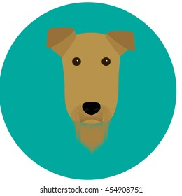 Airedale Terrier head isolated on turquoise circle background.